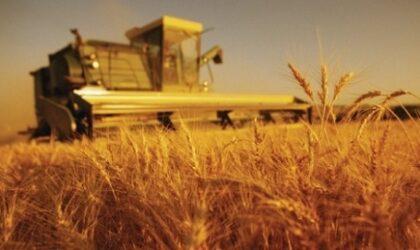 Prognoza agricola 2021